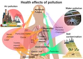 efects of pollution